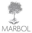 Marbol | Consultoría y OTEC educación a empresas